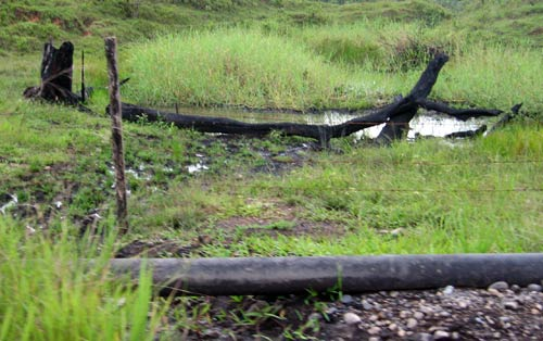 A recently blown oil pipeline - a common sight